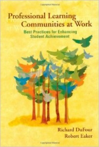 ProLearningCommunity 202x300 - Professional Learning Communities at Work: Best Practices for Enhancing Student Achievement